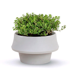 Fold Flexible Planter | Urban Avenue