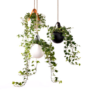 Sling Hanging Planter - Black | Urban Avenue