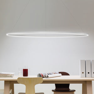 Ellisse Suspension Light | Urban Avenue