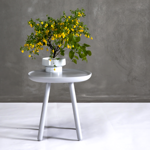 Naïve 45 Side Table | Urban Avenue