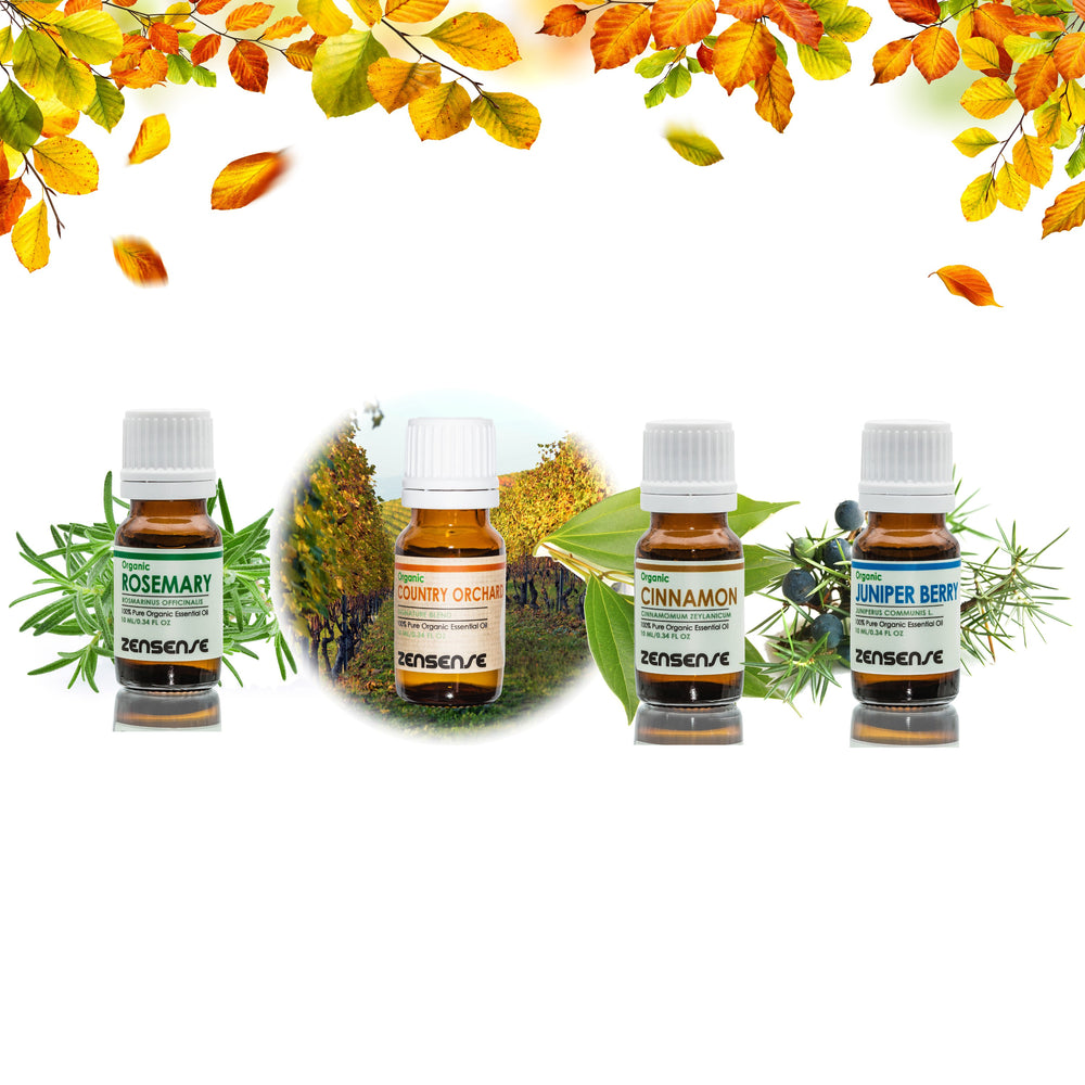 EXCLUSIVE OFFER - Fall Collection Oils