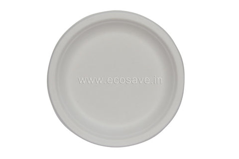 10 inch Bagasse Round Regular Plate