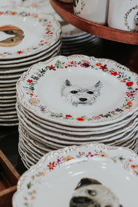 Floral Dog Plates - The Pioneer Woman Mercantile