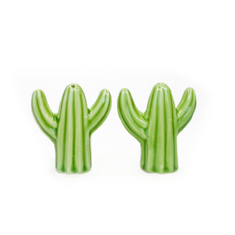 Cactus Salt and Pepper Shaker - The Pioneer Woman Mercantile
