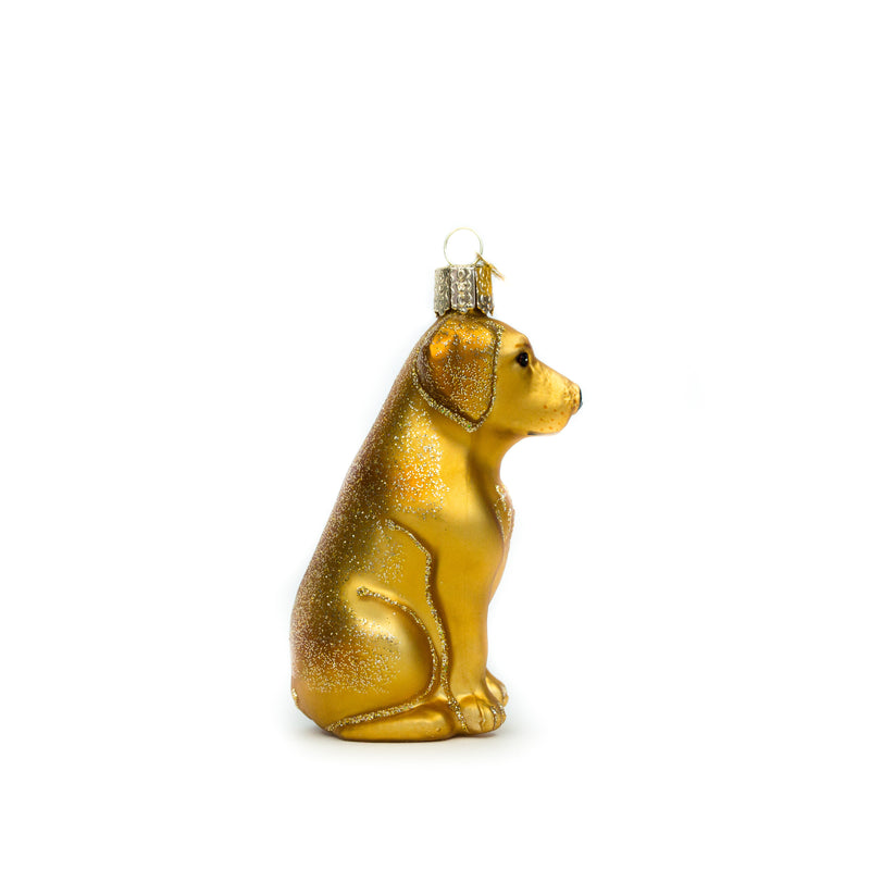 Yellow Lab Ornament - The Pioneer Woman Mercantile
