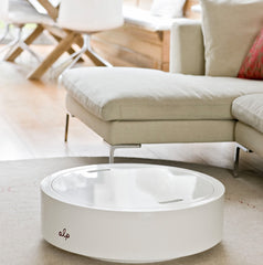alp interior coffee table