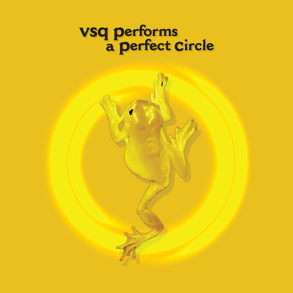 VSQ Performs A Perfect Circle