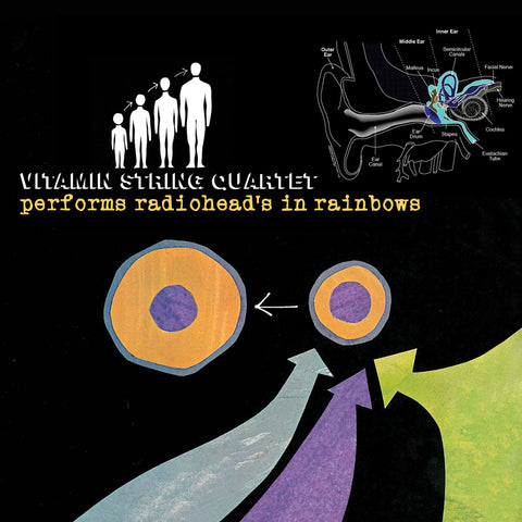 vitamin string quartet vsq radiohead in rainbows tribute