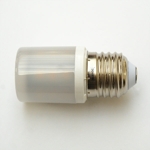 E27 24 SMD High Output 2835 Edison Screw Lamp with Diffuser