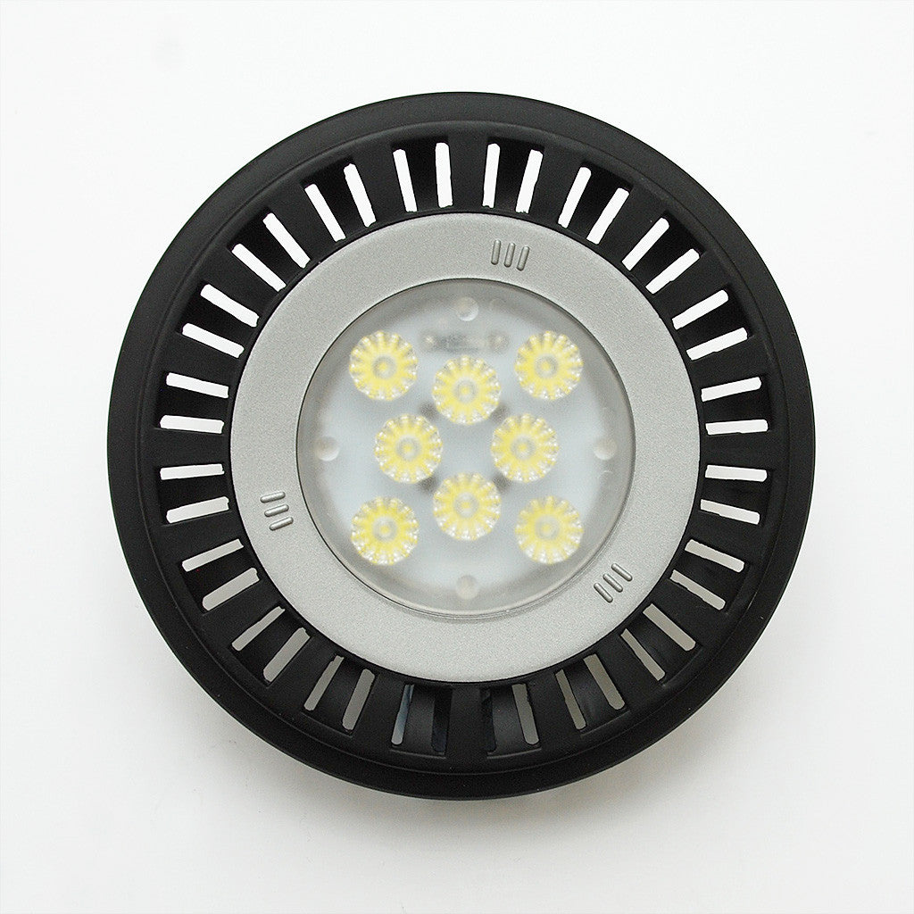 PAR 36 Sealed-Beam LED Replacement Lamp: Weatherproof