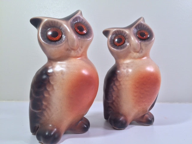 Vintage Retro Owls (Set of 2)