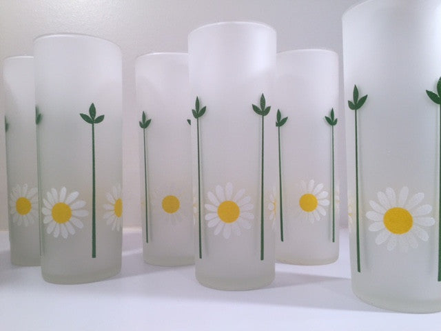 Federal Glass Mid-Century Daisy Tall Frosted Collins Glasses (Set of 8)