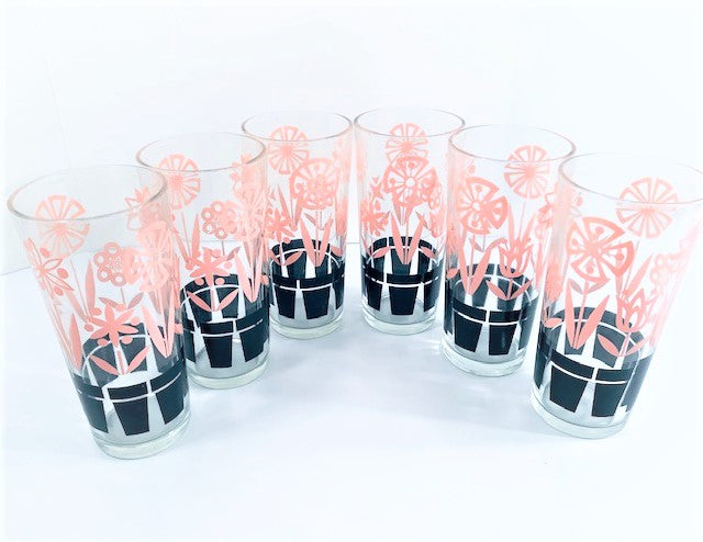 Vintage Pink and Black Blooming Flower Pots Tall Glasses (Set of 6)