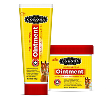 CORONA WOUND CARE LANOLIN OINTMENT