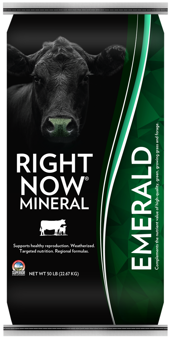 RIGHT NOW MINERAL EMERALD SUPPLEMENT CATTLE FEED
