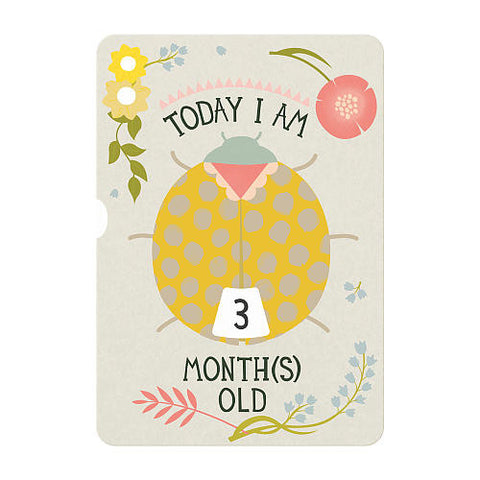 Baby's First Year Turn Wheel Photo Card