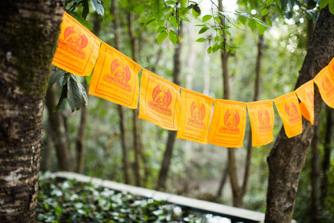 Shakyamuni Buddha Single Color Prayer Flags