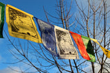 Four Harmonious Friends Flags