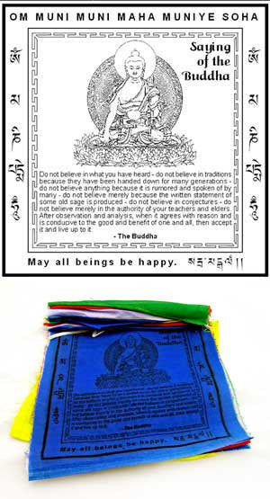 Sayings of the Buddha Flags