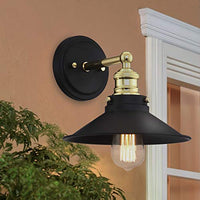 Mega Lighting Light Sconce Matte Black with Brass Accents