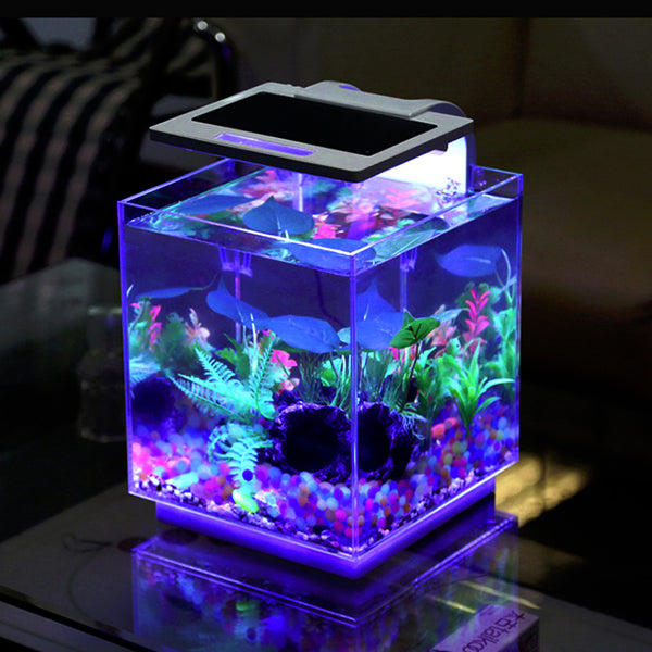 Aqua Innovations 4 Gallon Cube Aquarium Kit (Includes Filter + LED Light)