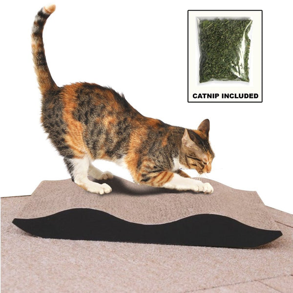 "Paw Essentials 13"" Cardboard Cat Scratcher Lounge for Kittens with Catnip"