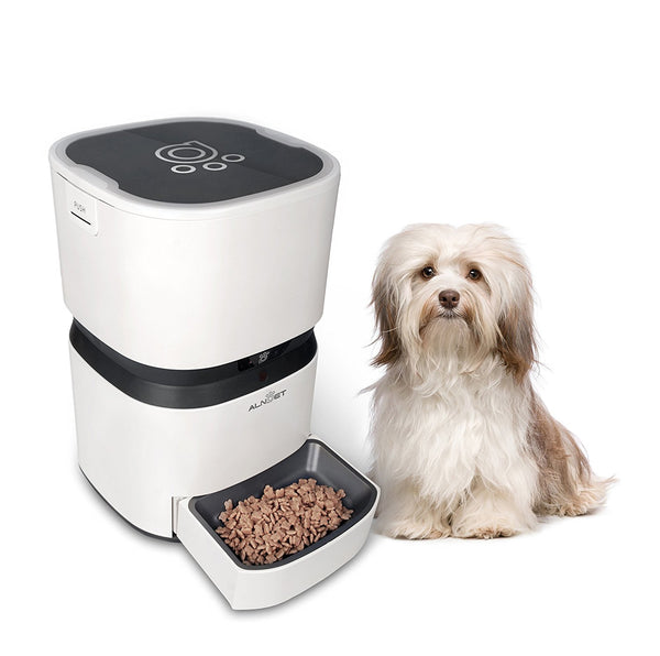 Paw Essentials Intelligent Auto Pet Feeder - with Advanced Feeding, Integrated Scale