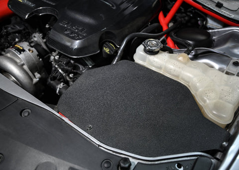 RIPP Air Filter Shield for Vented Hoods