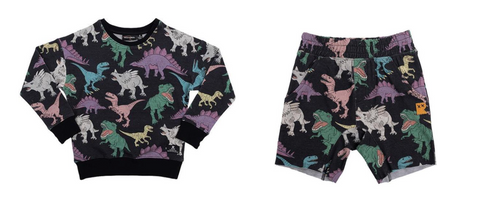 Rock Your Baby Land Before Time Dino Sweatshirt and Shorts