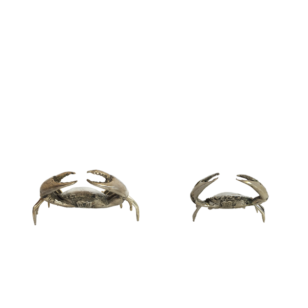 Silvery crab