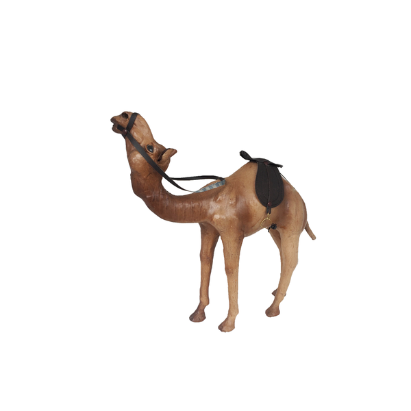 Leather Dromedary