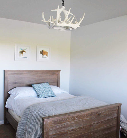 W6 White Antler Chandelier