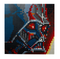 LEGO® Art 31200 Star Wars™ The Sith™ - My Hobbies