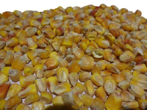 Bearts Whole Maize 20kg