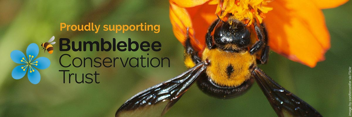 Magpie's Loot Proudly Supporting The Bumblebee Conservation Trust banner