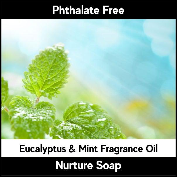 Eucalyptus & Mint Fragrance Oil