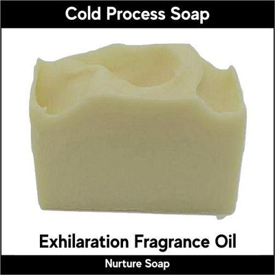 Exhilaration in cold process-Nurture Soap