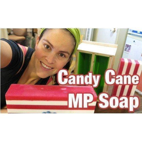 Melt and Pour Christmas Soap Making Kit - Nurture Soap