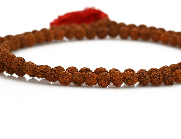 Rudraksha Buddhist Mala Beads Close Up