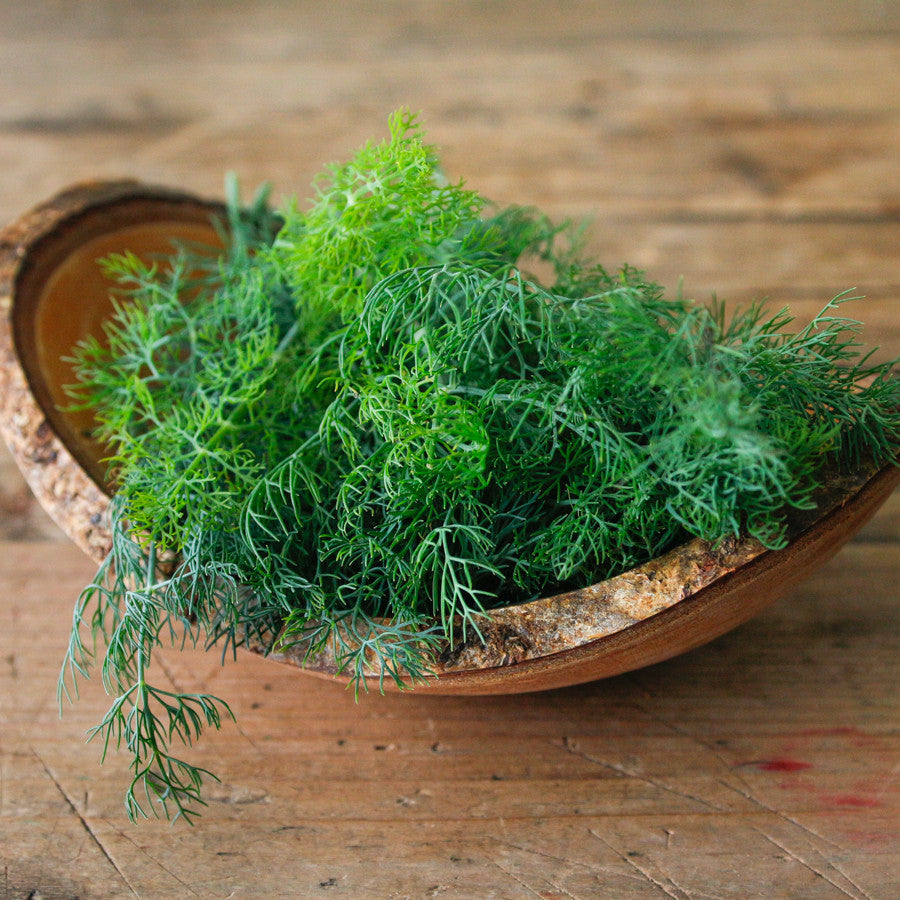 Dill 30g per pack