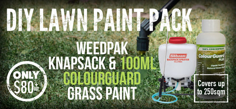 DIY Lawn Paint Pack