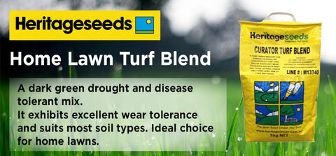 5kg Home Lawn Turf Blend - turfmate