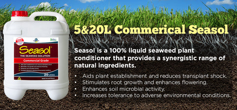 Seasol Commercial Liquid Seaweed