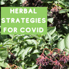Herbal Strategies for COVID