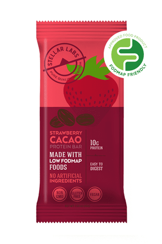Low FODMAP Certified Protein Vegan Bar, Strawberry Cacao Bar, 6 pack-protein snack bar-casa de sante