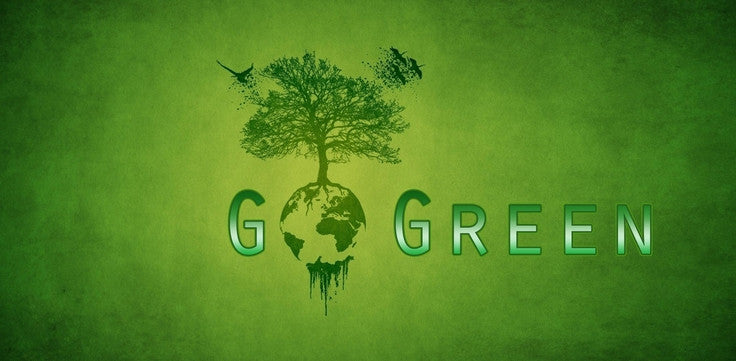 6 Ways To Save Money by Going Green