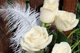 Dozen White Roses Arranged - Lia's Floral Designs