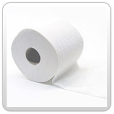 Toilet Paper, Virgin 2 Ply, 350 sheets, 33gsm