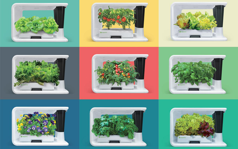 9 aspara nature hydroponic smart grower arranged with differnet background and produce growing