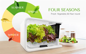 4 seasons icon with white hydroponic grower